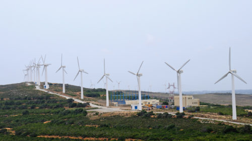 Licenses granted to four foreign companies producing electricity from wind