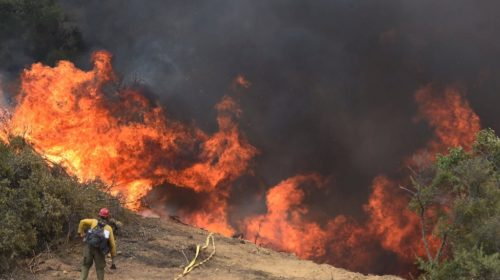 Fires destroy nearly 2,000 hectares of forests in Tunisia (2019)