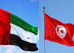 'Emirati-Tunisian Business Council' discuss cooperation, investments